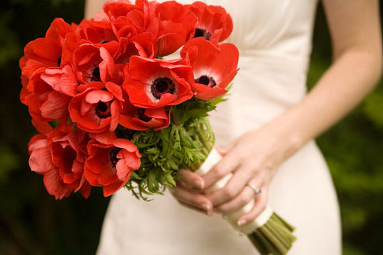 Get a high with the opium of california weddings the - Yellow poppy flower meaning ...